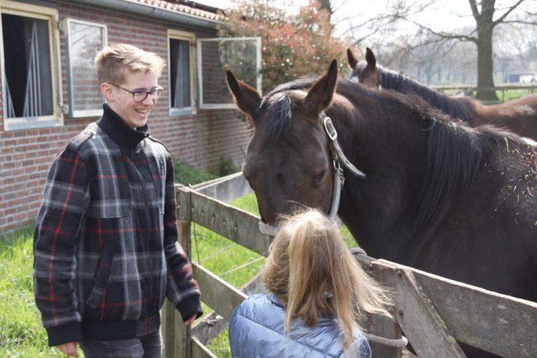 Lees meer over het artikel Lammetjes dag bij Liever in Lierop